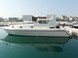Ultimate 38 Dubai Marine -